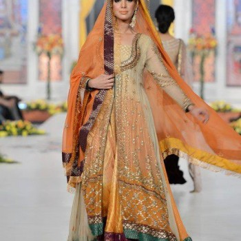 Pakistani Bridal Dresses 2013 Collection (19)