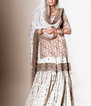 Pakistani Bridal Dresses 2013 Collection (20)