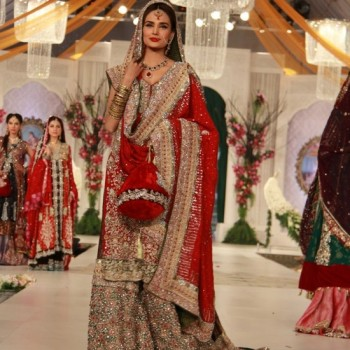 Pakistani Bridal Dresses 2013 Collection (25)