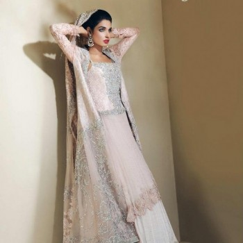Pakistani Bridal Dresses 2013 Collection (32)