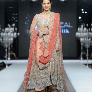 Pakistani Bridal Dresses 2013 Collection (34)