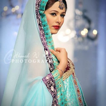 Pakistani Bridal Dresses 2013 Collection (39)