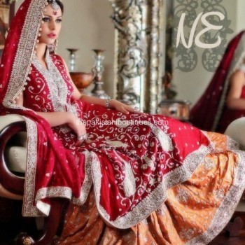 Pakistani Bridal Dresses 2013 Collection (44)