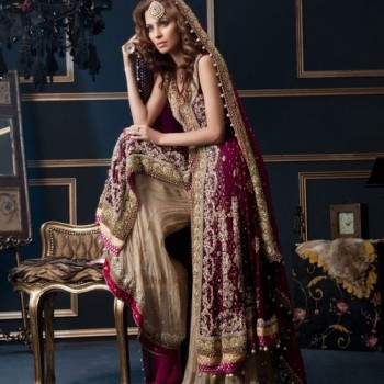 Pakistani Bridal Dresses 2013 Collection (53)