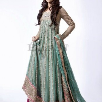 Pakistani Bridal Dresses 2013 Collection (59)