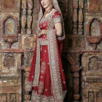 Pakistani Bridal Dresses 2013 Collection (68)