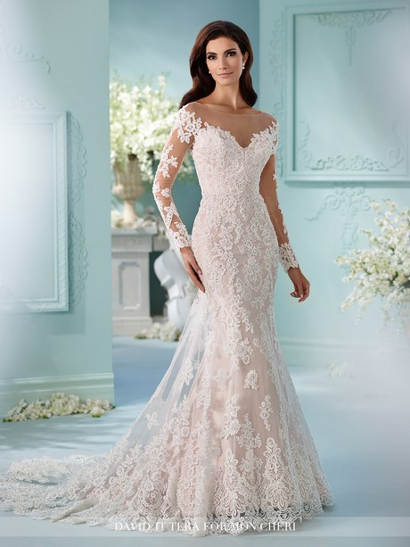 Wedding Gowns With Sleeves Images 58